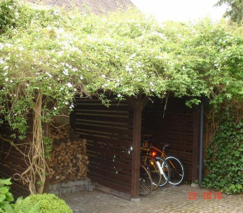Cykel skur træ konstruktion