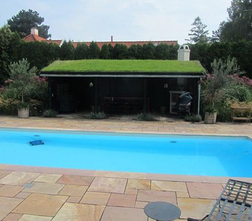 Pool hus lavet af træ med græs på taget